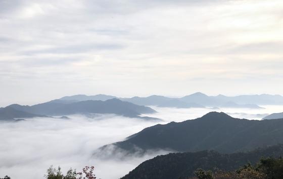丹波霧   〜岩屋山からの雲海〜