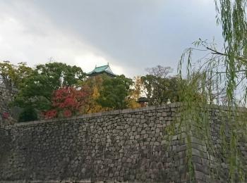 大阪城公園でrunningしてきた話